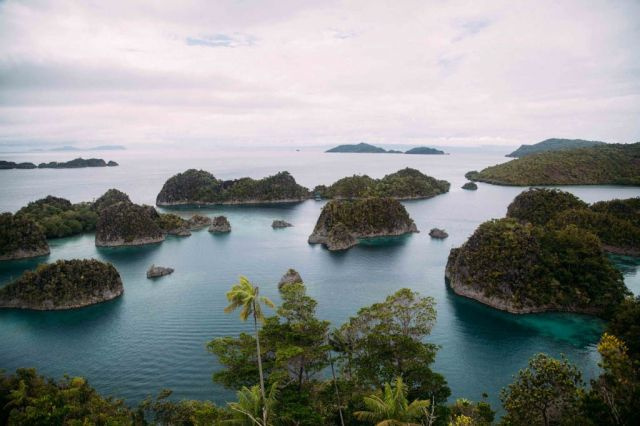 Fam Archipelago: Chip lain yang memukau dari Raja Ampat